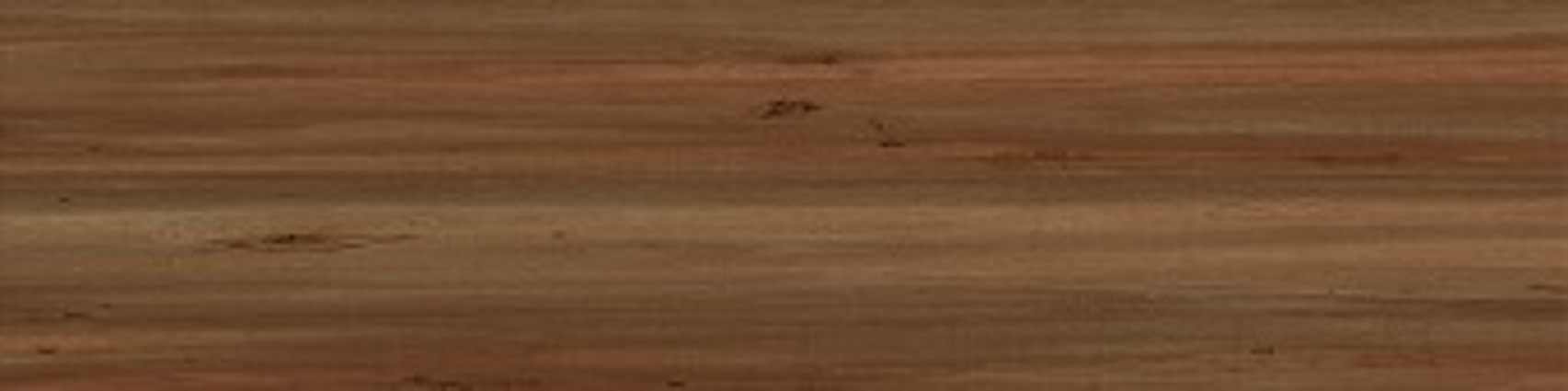 RIPOSA - Brown floor tile - 15x60.jpg